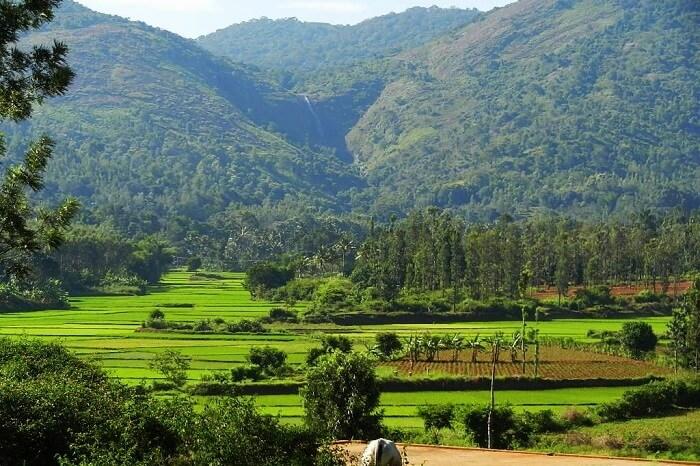 Kolli Hills From Chennai