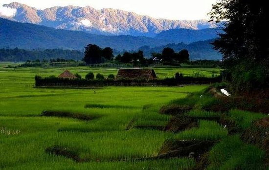 Relaxing Holiday Destination Ziro