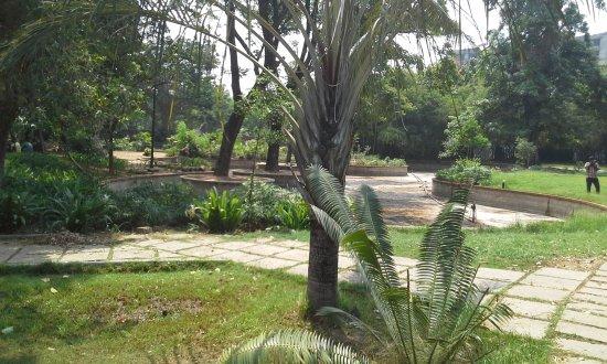 Semmozhi Poona, Chennai