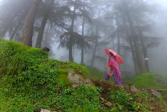 North India During Monsoons Dharamshala