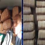 500 KG Marijuana recovered from Phansi!