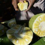 Nutritious fruit CN