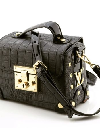 Ladies Bag in Latest Style multiple colours