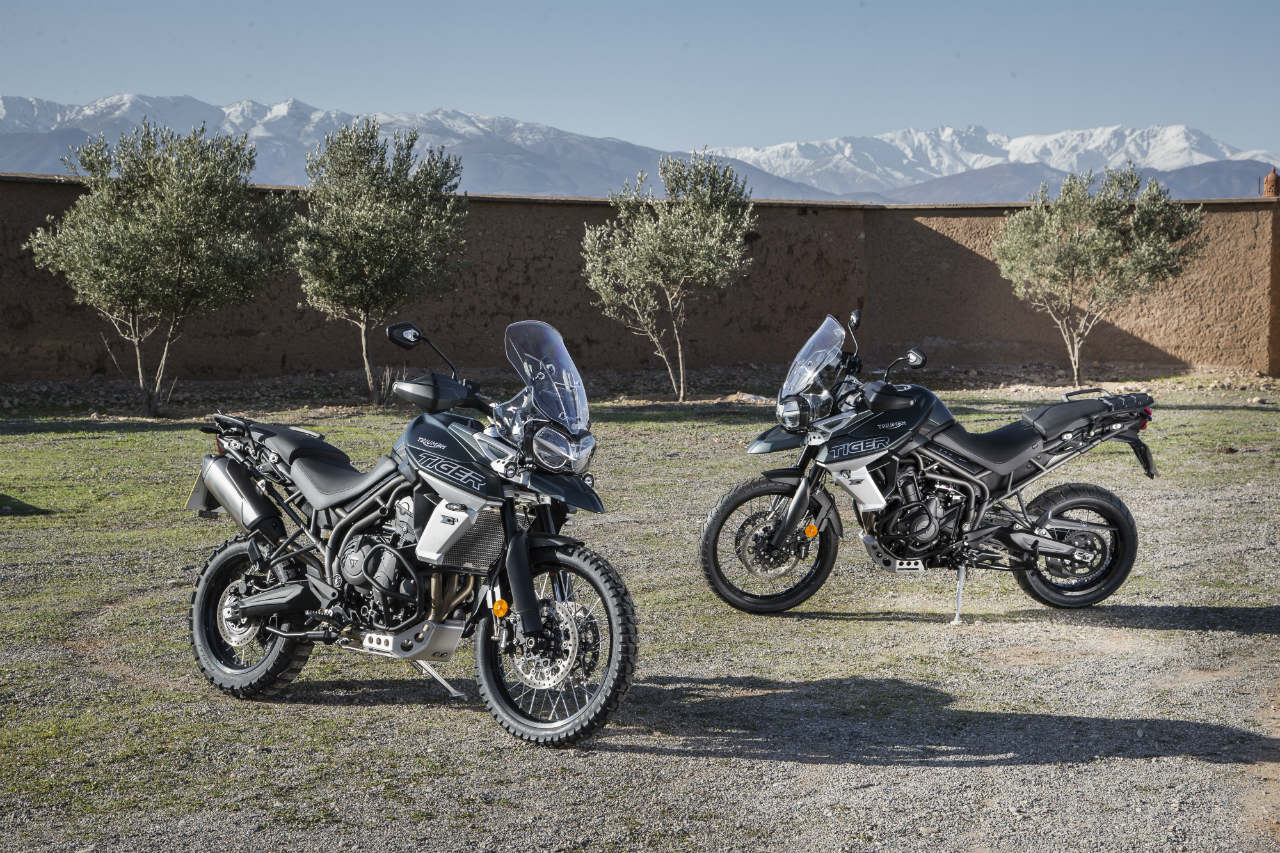 The Hunt Is Back On 2018 Triumph Tiger 800 First Ride Motoring World