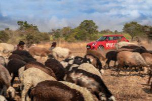 Maruti Suzuki Swift ICOTY Drive 2019