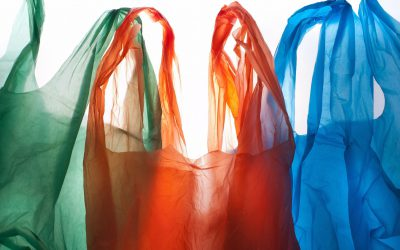 Envigreen Comes Out With 100% Biodegradable Plastic Bags!