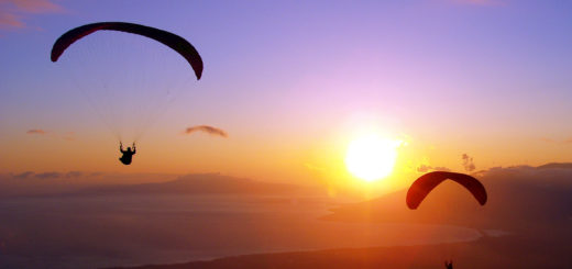 Arambol Beach Paragliding Destination in India