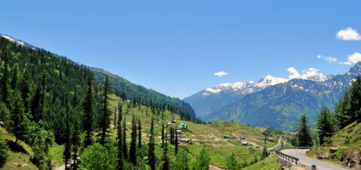 Beautiful Hill Stations Near Delhi - Dehradun