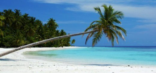 Havelock Island, Andaman Islands