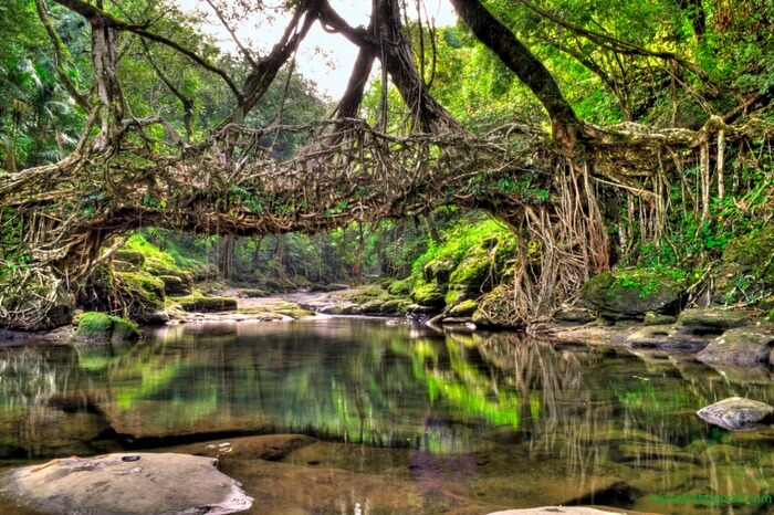 Meghalaya Natural Scenic Attractions In India