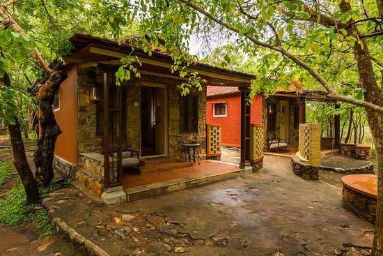 Tusker Trails Resort, Bandipur National Park