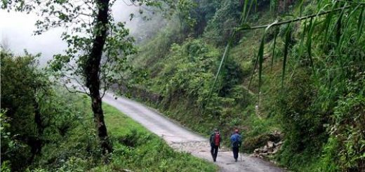 Backpacking Trip Darjeeling