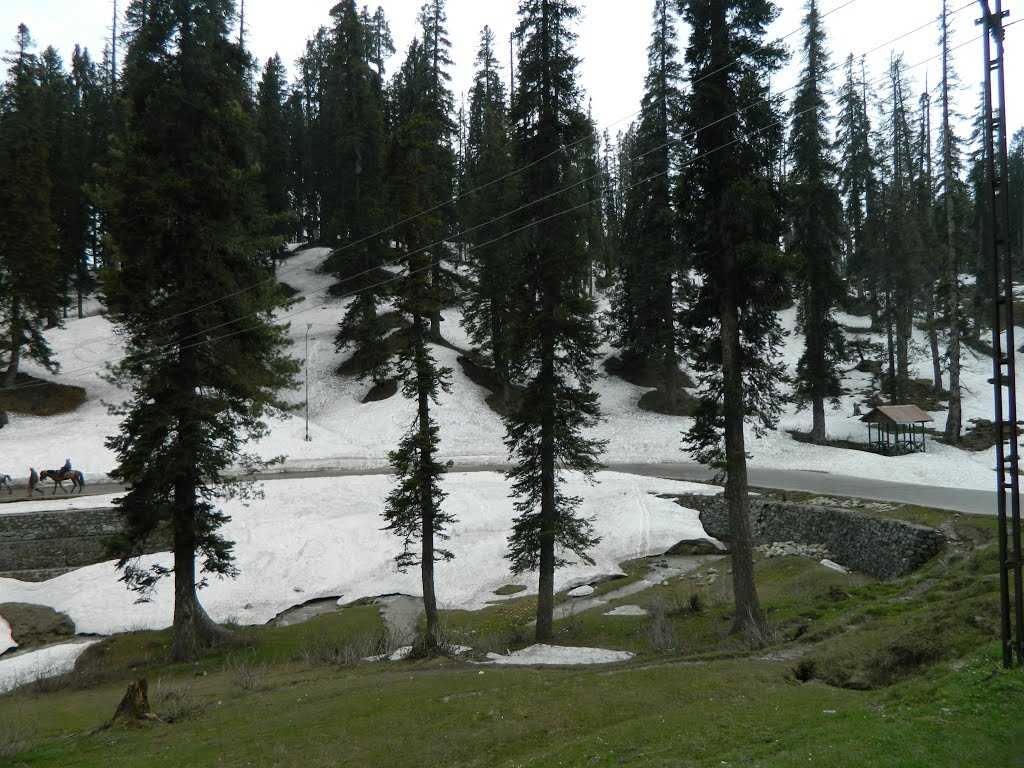 Himalayas Region Gulmarg
