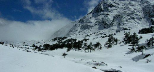 Himalayas Region Tawang