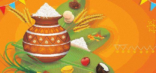 Sankranthi Festival Offers