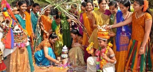 Sankranti in Andhrapradesh