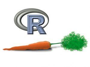 R, caret