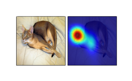 Essentials of Deep Learning: Visualizing Convolutional