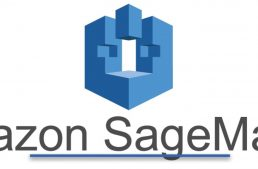 Amazon Unveils the Technology Behind the AWS SageMaker