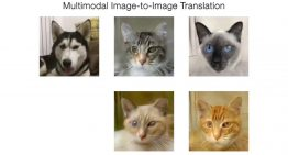 Here's a Deep Learning Algorithm that Transforms an Image into a Completely Different Category