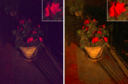 Move Over Photoshop – This Python Script Works like Magic on Low Light Photos (GitHub link included)