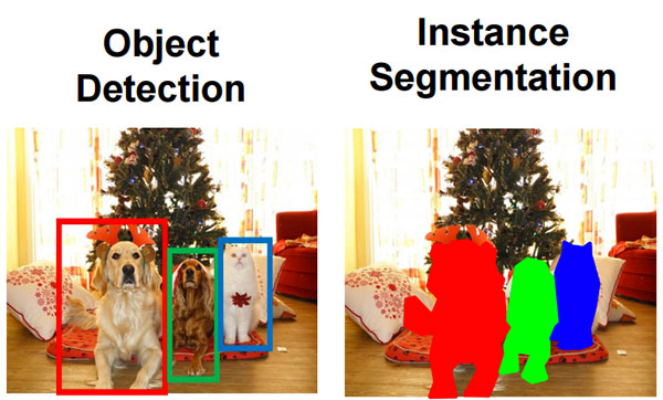 object detection and instance segmentation