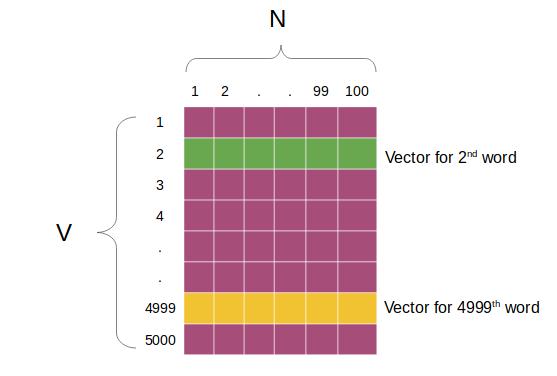 word2vec weight matrix