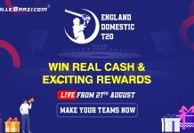English Domestic T20