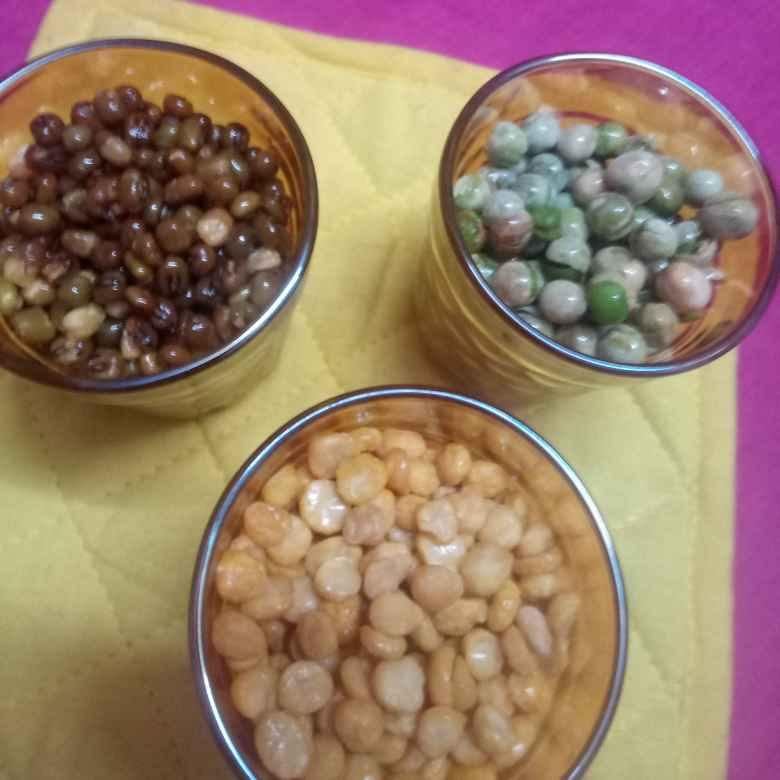 Photo of Three types of protein snacks(gram dhal,green gram, green peas) by Balajayasri Dhamu at BetterButter