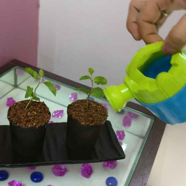 How to make Flower Pot