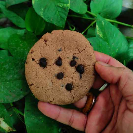 Photo of choco crunchy cookie by Dev Siddharth Pratap Singh at BetterButter