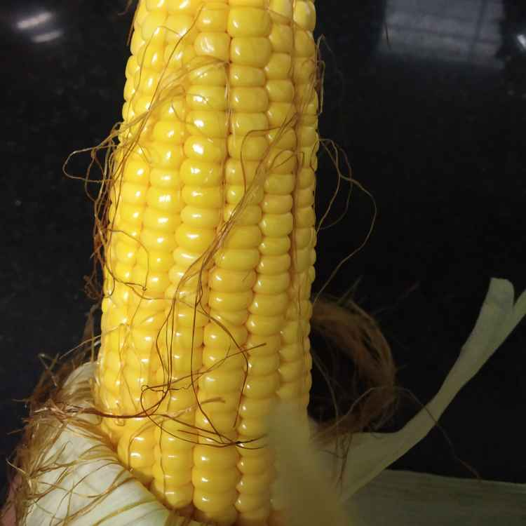 Photo of Boiled corn by jassi aarif at BetterButter