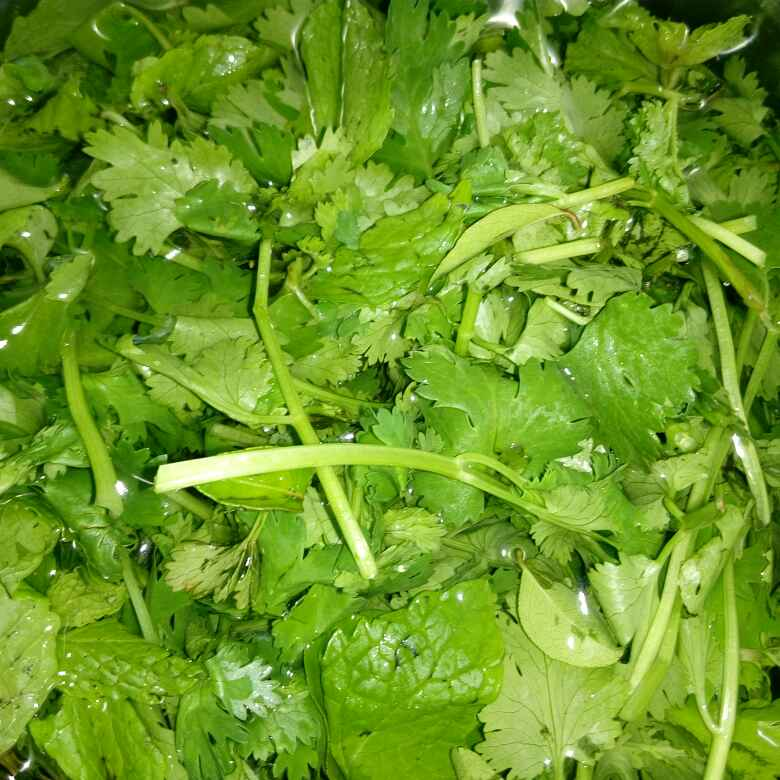 Photo of Hotel style green chutney by Karuna Pooja at BetterButter