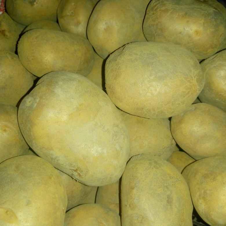 Photo of Potato poppy seed curry by Mahua Nag at BetterButter