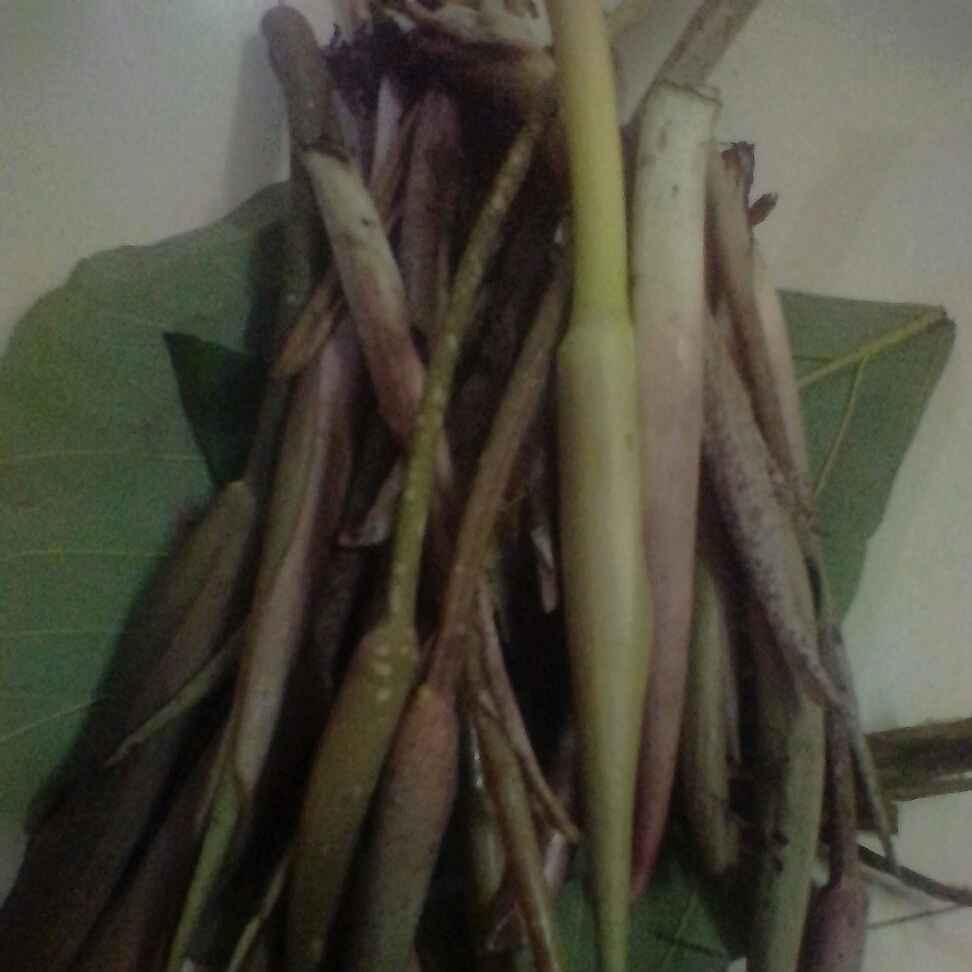 Photo of Sheval vegetable by Manasvi Pawar at BetterButter