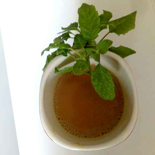Photo of Gunkari chai by Nishi Maheshwari at BetterButter