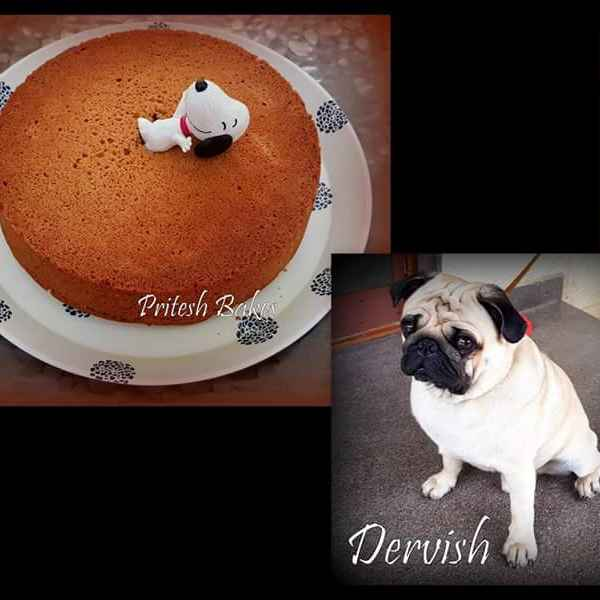 How to make Honey peanut butter cake for puppies