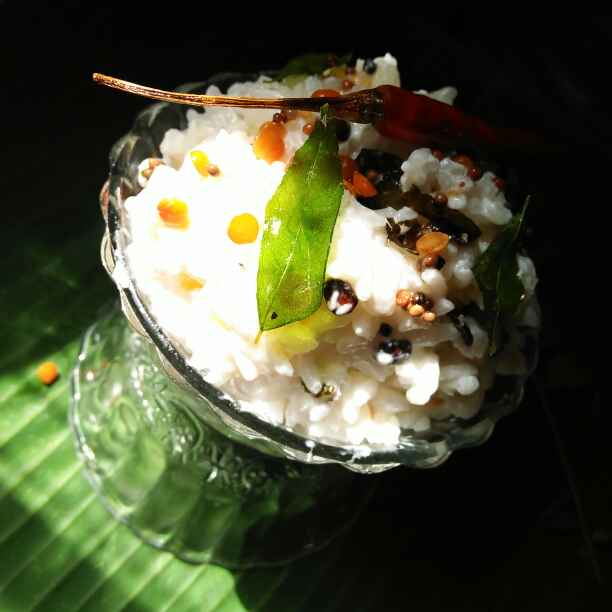 Photo of curd rice by Sanjhbati sen at BetterButter