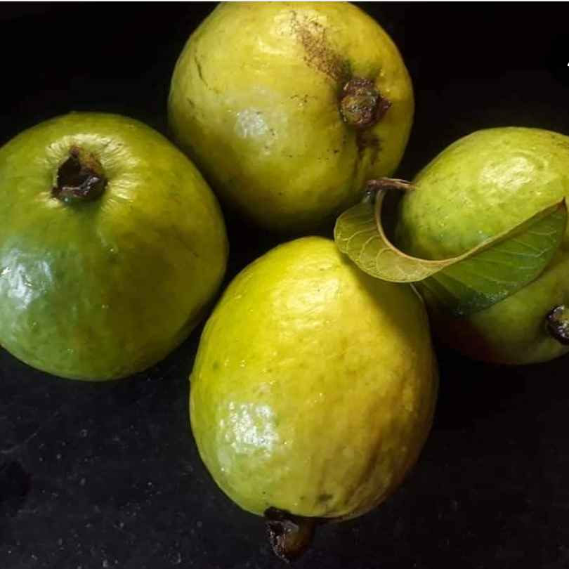 Photo of Guava(Amrood) Tangy Chutney by Tanushree Jha at BetterButter