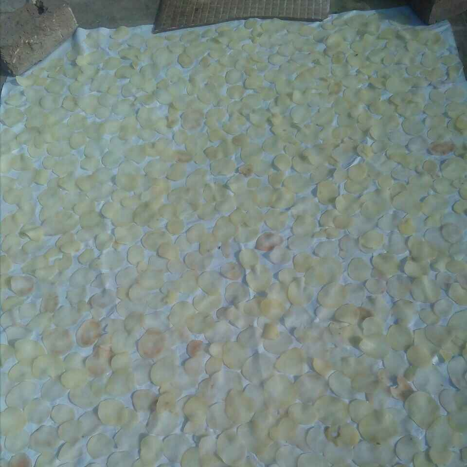 Photo of Potato Chips by Tiwari Mohini at BetterButter