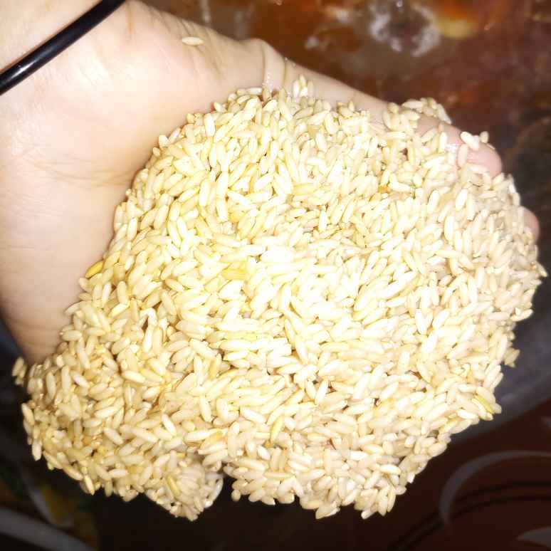Photo of Brown rice biriyani with rajma and double beans by Vasuki Pasupuleti at BetterButter