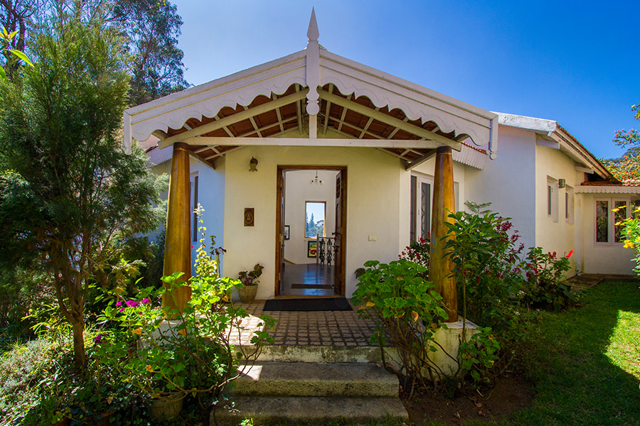 Beautiful entrance amidst house plants and garden in Christmas villa