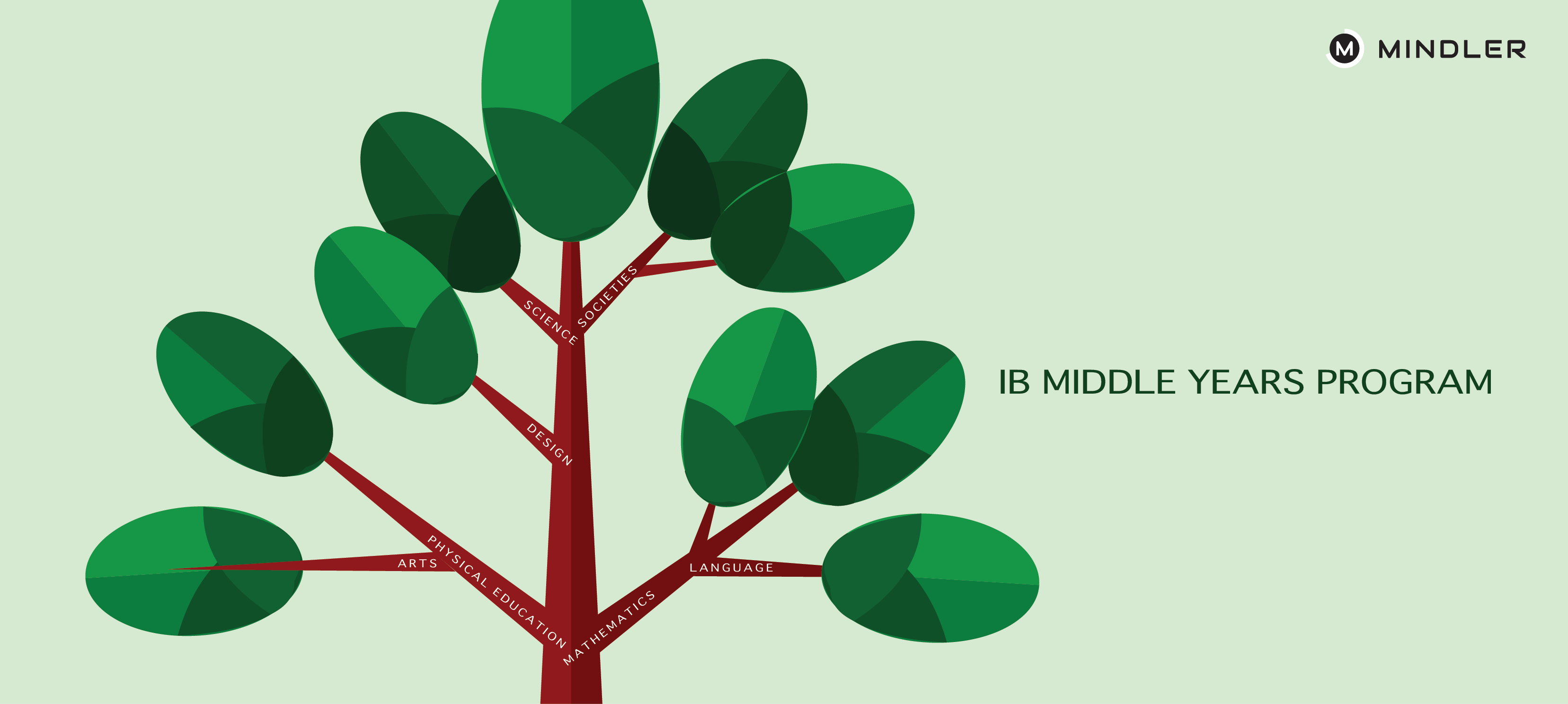 MYP-IB-Board