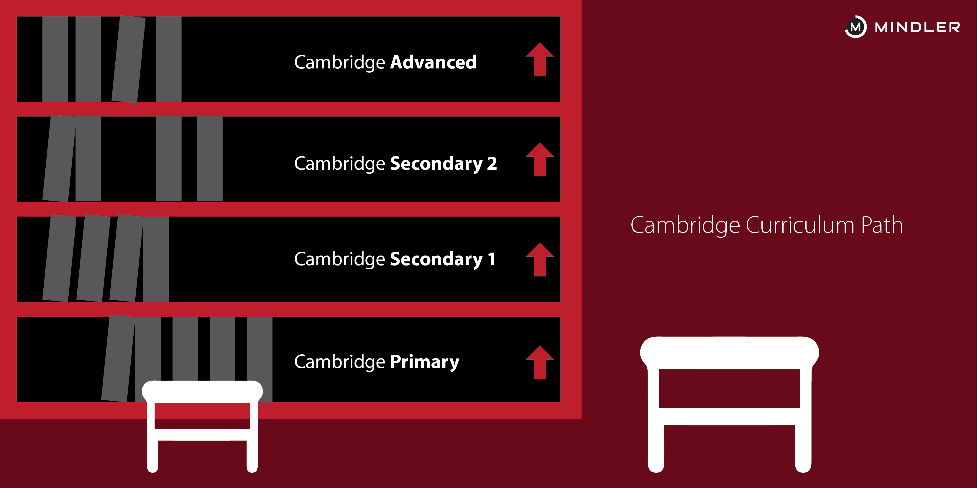 cambridge-board-programs