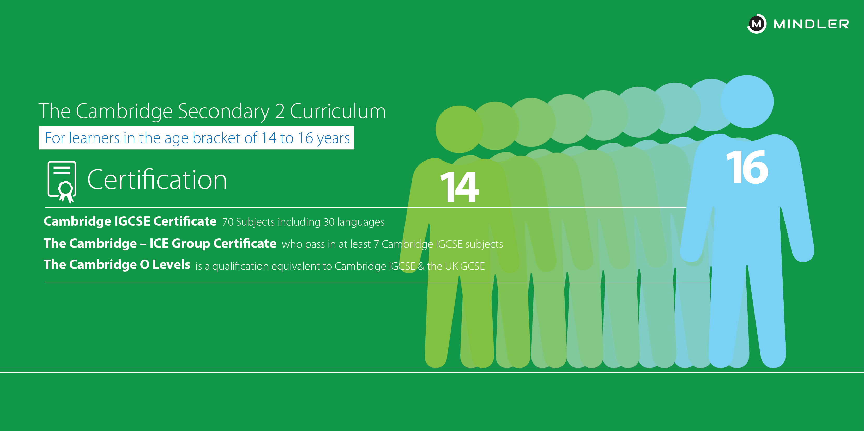 cambridge-board-secondary-curriculum