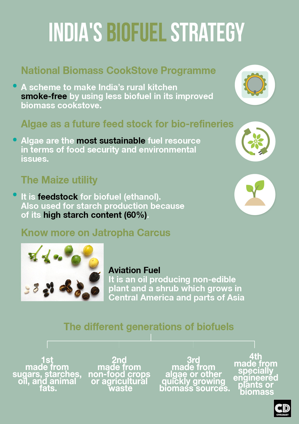 Different types of biofuels