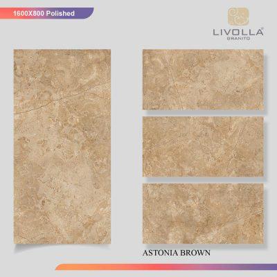 800x1600 Glossy ASTONIA BROWN