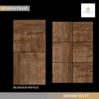 600x600 Wood BLOSSAM WENGE