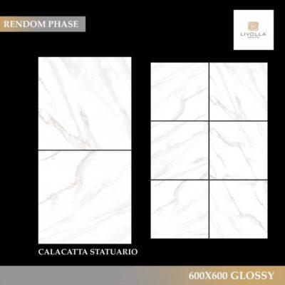 600x600 Glossy CALACATTA STATUARIO