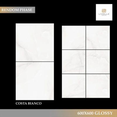 600x600 Glossy COSTA BIANCO